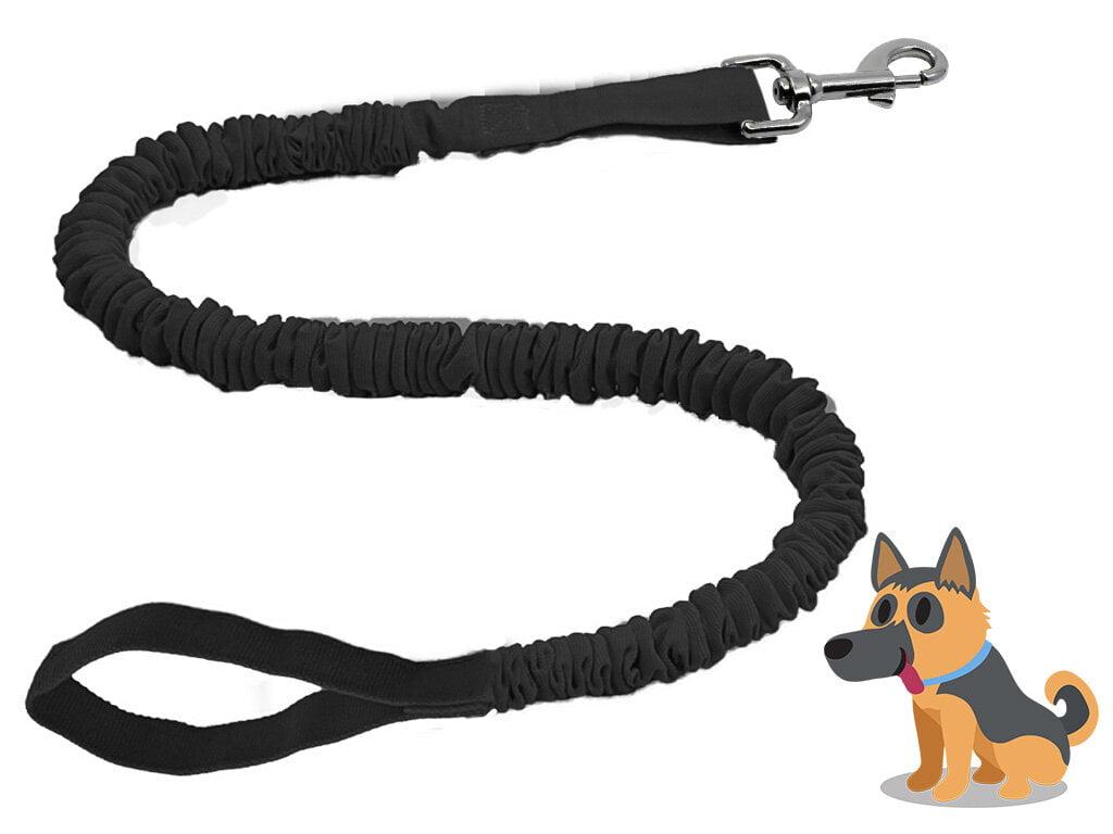 Dog Leash TowWhee
